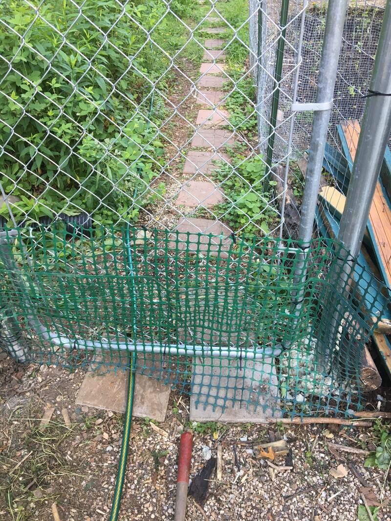 cat wire fencing